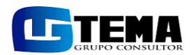 Logo de Tema Grupo Consultor