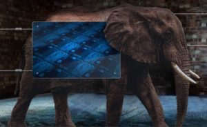 elefante optimización de stocks