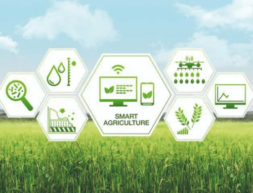 Big Data como aliado del sector agroalimentario